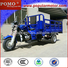 2013 Chinese Hot Popular Water Cool Gasoline Cheap Cargo 300cc Trike Scooter