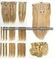 Le volume de cheveux humains/prolongation de perruque/cheveux humains/cheveux/coiffure de Remi