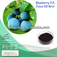 Vaccinium corymbosum L Blueberry Extract Juice 65 Brix 15% 25% anthocyanidins