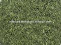 calidad del nilo egipto comercio secas las hojas de albahaca