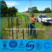 Australia star picket Y post black dipped star picket fence posts