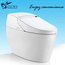 bathroom fitting Intelligent concealed toilet