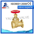 Brass Gate Valves FIP Red-white 200 WOG Full Bore washed YL107W