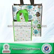 Non-woven PP Bags Reusable Shopping Novel Bag