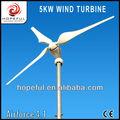 alternativa de la energía verde 5kw jardín hacer molino de viento