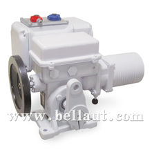 Electric operated valve actuator integral type