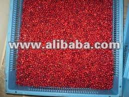 Fresh wild Huckleberry for sale (Vaccinium vitis-idaea)
