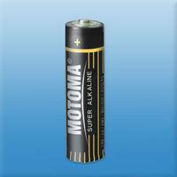 LR6/AA Alkaline battery for Camera
