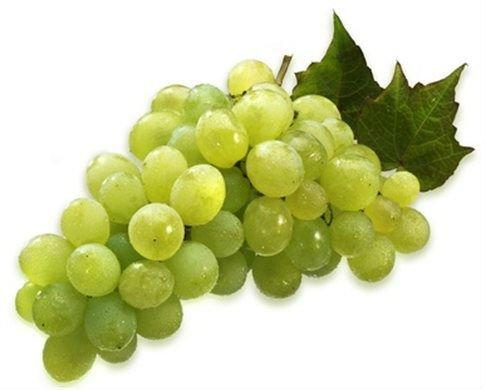 las uvas de victoria-Uvas Frescas-Identificación del producto ...