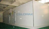 Deep Freezer Food /Meat /Fruit/ Vegetable Cool Storage freezer ice bin Room (CR-250)