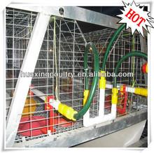 Uluslararası standardı büyük ölçeği- fabrika fiyat iyi qualiy otomatik tavuk besleme sistemi