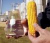 /product-free/bioethanol-lux-spirit-132711771.html