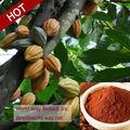 100% de cacao natural de harina con precio competitivo