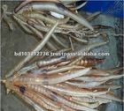 Hot Selling High Quality Conger Eel Fish Maw