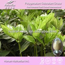 Natural Polygonatum odoratum (Mill.)Druce Extract 10:1