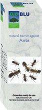 Ants Granular