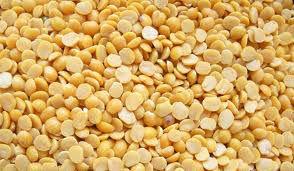 Toor dal ou gramme jaune, le pois cajan (cajan de cajanus)