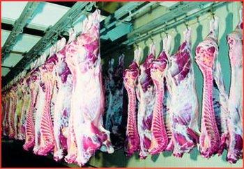 halal beef