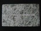 White granite paving stone/flagstone