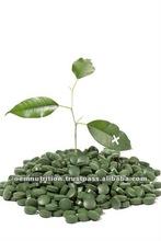 Herbal Supplement 200mg Pure Organic Chlorella Tablets