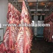 Frozen halal Buffao Meat available...