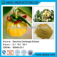 Brindle berry/ Garcinia cambogia fruit/CAS 90045-23-1