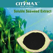 solubile ascophyllum nodosum fetilizers estratto di alghe nori alta fertilizzante acido alginico