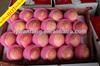 2014 new seasonable sweet fuji apple fruit with wholesale price