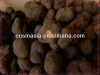 organic fresh frozen tuber indicum truffle