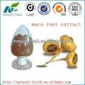 maca extrait de racine en poudre fabriqués en chine