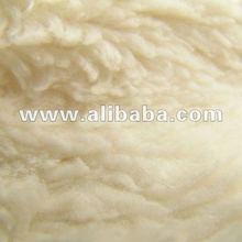Organic Plush Fabric