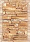 Ceramic Tile 250x400