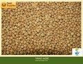 fe mg gránulo de fertilizante agricultura de hierro de grado