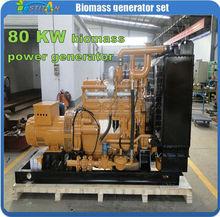 80kw(50kw)biomass methane gas power electricity generator set unit
