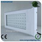 400 HID Grow Light Replacement Energy Saving Full Spectrum LED Grow Light 120W