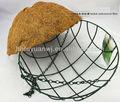 "Colgando cesta de la flor 14"" ronda maceta verde"
