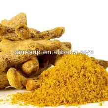 Buy 100% Organic Turmeric Curcumin Powder