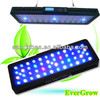 sunrise light aquarium dimmer EverGrow IT2060 with CE and Rohs