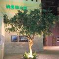 Artificial de árboles 400cm para la expo mundial de shanghai diseño/acacia artificial de árboles confusa