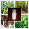 CAS NO.1912-24-9 Professional China Supplier Atrazine 80% WP