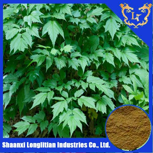 Black cohosh Triterpene glycosides 2.5%,5%,8% HPLC