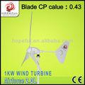 1kw de turbina de viento para la azotea, generador eléctrico de molinos de viento para la venta, doméstica de molino de viento de la turbina maintanence libre