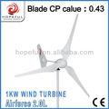 Alternativa de la energía verde de aerogeneradores de 1kw, generador de energía eólica, molino de viento de la turbina