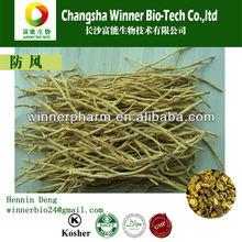 dry herb Divaricate Saposhnikovia Root(huang feng)