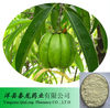Best Quality Garcinia Cambogia Extract 70%-80% Hydroxy citric acid(HCA)