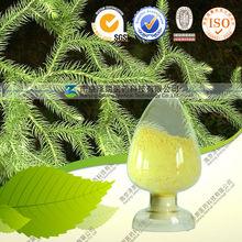 Club moss extract (Huperzine A)
