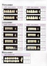 Denture Acrylic Resin Teeth/Dental Acrylic teeth China