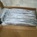 profundo mar de alta calidad de pescado de la cinta