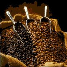 NICARAGUAN 100% QUALITY COFFEE BEANS!!!