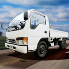 Isuzu Elf Cargo Truck for Sale